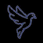 miniaturka-symbol-sport-2